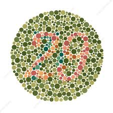 Colour Blindness Test Stock Image C029 4746 Science