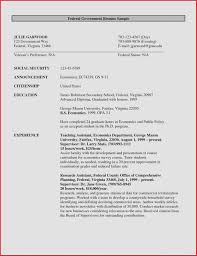 Resume Example For Teenager Resume Template Government Beautiful Federal Government Resume 31