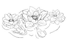 nice stencil of lotus flower tattoo design