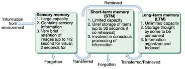 Long Term Memory Chart Memory Charts Thx4dmmrs107