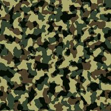Camouflage Pattern Unique FileCamouflage Pattern Texturepng Wikimedia Commons