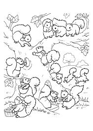 Kleurplaat Eekhoorn