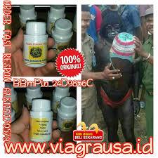 daun bungkus papua booster oil