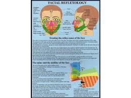 Cranial Reflexology Chart Facial Reflexology A4 Chart