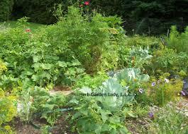 Herb Garden Start This Basic Herb Garden And Enjoy Your Own Herb Garden