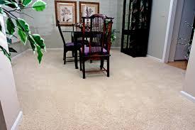 carpets that hide stains