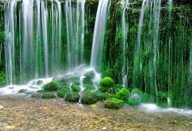 長野県の白糸の滝