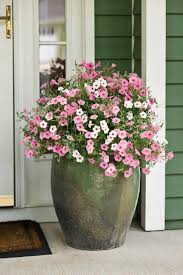 giant clay front door flower pot design