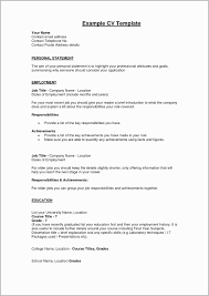 Example Achievements To Put On A Resume Summary A Resume Reference