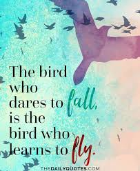 Birds Quotes 100 Best Birds Quotes Sayings About Flying Birds Picsmine 68