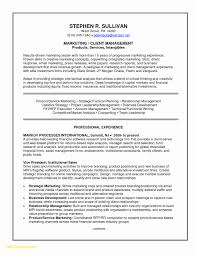 Free Modern Resume Templates Lovely 23 Traditional Resume Template