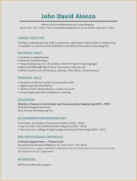 Resume Sample It Examples For Your Job 2016 Templates Stock Photos