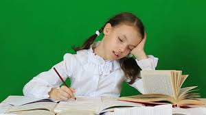 essay poverty cause effect guidelines
