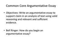 argumentative essay format singapore cbse sample papers class  argumentative essay format singapore