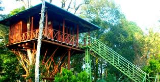 Dream Catcher Kerala Custom Dream Catcher Resort Munnar Munnar Tree House Tree House