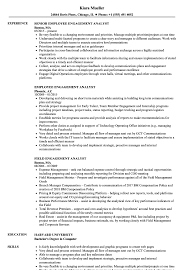 Web Analyst Resume Sample Engagement Analyst Resume Samples Velvet Jobs 17