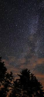 night-sky-stars-milkyway-wood-nature-dark