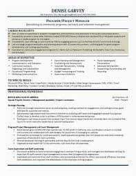 Finance Manager Resume Examples Pleasant Resume Format Of Finance