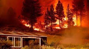 Tamarack Fire: Before it grew into out ...