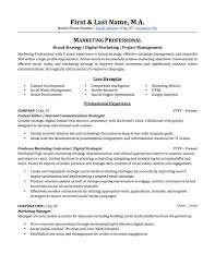 Advertising Marketing Resume Sample Professional Market Research