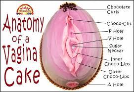 Image result for vagina