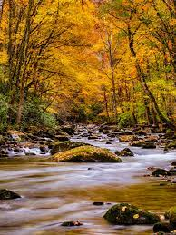 Beautiful Wallpapers Of Nature For ...
