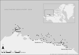 Perkins Calorie Chart Global Change Driven Use Of Onshore Habitat Impacts Polar