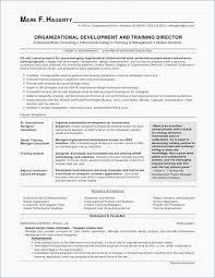 Resume Format For Usa Sample Example Job Resume Resume Template