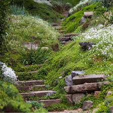 how to plan a garden on a steep slope