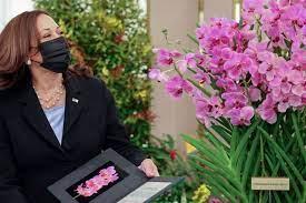 Kamala Harris: Orchidee in Singapur ...