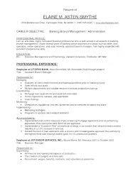 Banking Resume Samples Bank Manager Resume Samples Of Bank Branch Manager Resume Best Of