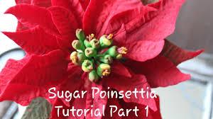 Sugar Poinsettia Tutorial Pagebdcom
