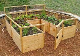 veggie patch diy raised garden