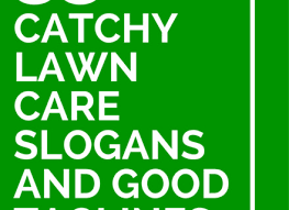 75 Catchy Lawn Care Slogans And Good Taglines Catchy