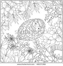 Small Picture Coloring Page Lovely Hedgehog Coloring Book Stock Vector 466371368