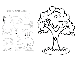 Forest Coloring Page A River In The Forest Coloring Page Forest