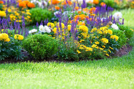 The Best Summer Landscaping Tips