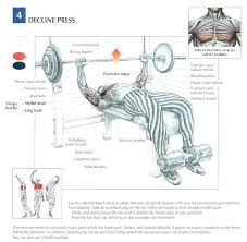 Workout Routines That Increase Your Max Bench Press  LIVESTRONGCOMIncrease Bench Press Routine