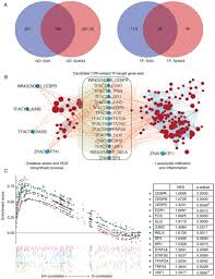 Translation Vs Transcription Venn Diagram Identification Of Key Transcription Factors Associated With