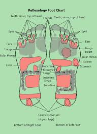 Reflexology Chart Vagus Nerve Reflexology Foot Chart New Health Guide
