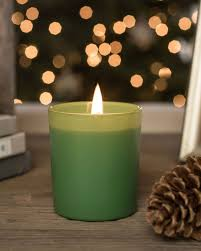 ... Fir Forest Scented Italian Candle Alt ...