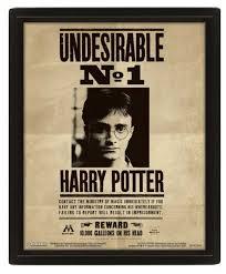 Купить <b>3D Постер</b> Harry Potter: Potter / Sirius по низкой цене с ...