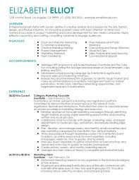 Permalink to Entrepreneur Resume Samples