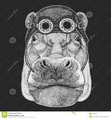 <b>Hippo</b>, <b>Hippopotamus</b>, Behemoth, River-<b>horse</b> T-shirt, Tattoo ...