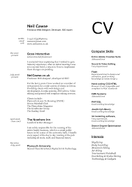 Computer Skills In Resume Sample Resume Writing Computer Skills Danayaus 7