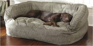 best sofa for dogs sofa dog bed beautiful best sofa dog owners leather sofa dog cover