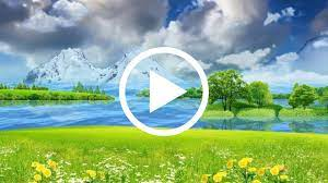 Natural Background And Wallpaper Video ...