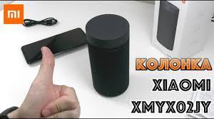 <b>Колонка XIAOMI</b> XMYX02JY - YouTube