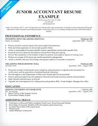 Sample Resume Of A Cpa Junior Accountant Resume Sample Sample