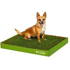 dogs bathroom grass. doggielawn disposable dog potty - real grass large 24x21 inches dogs bathroom y